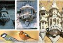 (Galerija) Ptice su imale dvorce poput sultana u vrijeme osmanskog carstva