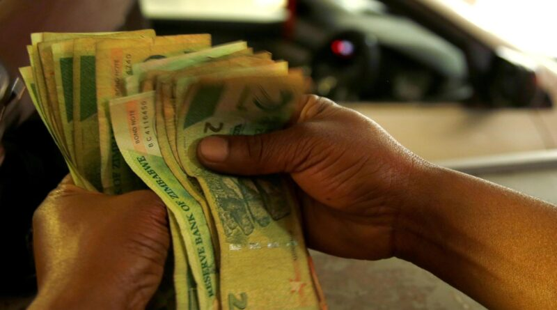 Zimbabwe Conquered by Business Cartels