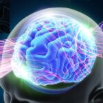 How this year of working on Zoom has affected your brain