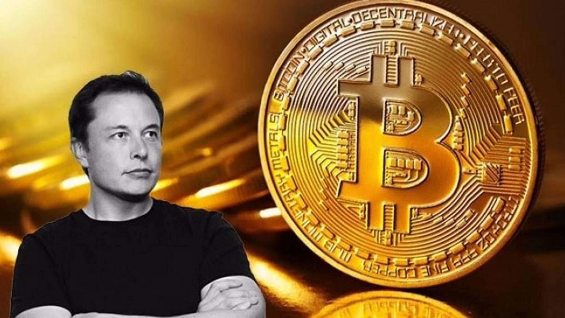 bitcoin portalas btc crewe