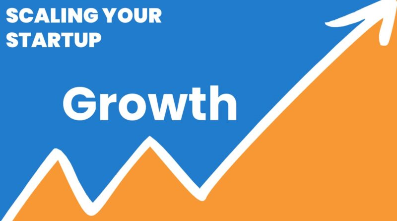 Scaling Your Startup: Growth