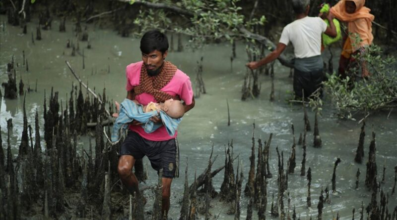 Genocide of Rohingya shows no sign of abating: Report