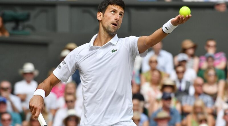 Novak Đoković, Wimbledon